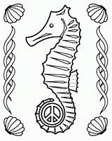 Seahorse Coloring Pages Sea Horse Coloring2print sketch template