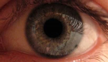 Pupil Dilating Reverse Eye Vision Night Human
