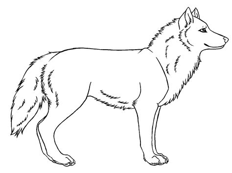 wolf drawing clipartsco