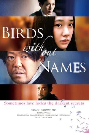 birds  names