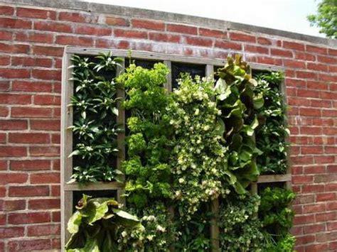 Vertical Herb Garden Design by Gardening Landscaping Vertical Herb Garden With Wall