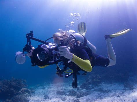 underwater photographer  scubafish news