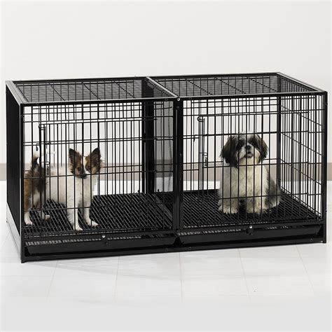 review proselect steel modular cage  plastic tray