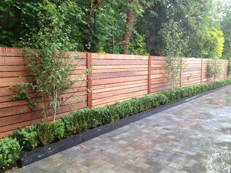 modern garden fencing ideas ipe fence box hedging birch garden pinterest fence fences and birch