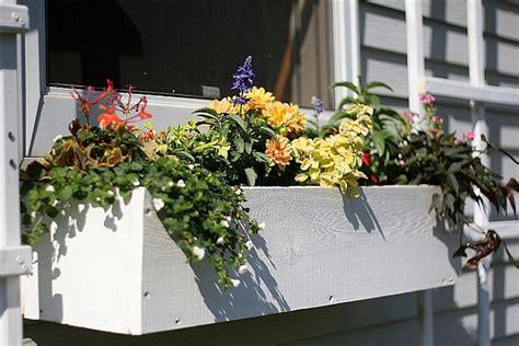 ready   spring  charming diy window boxes ideas