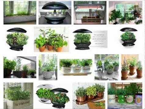 How To Grow An Indoor Herb Garden Youtube