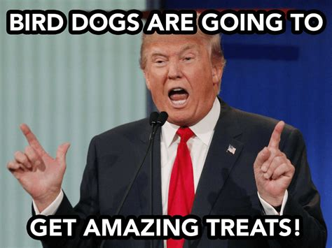 10 Hilarious Donald Trump Hunting Memes, Plus 2 Bonus