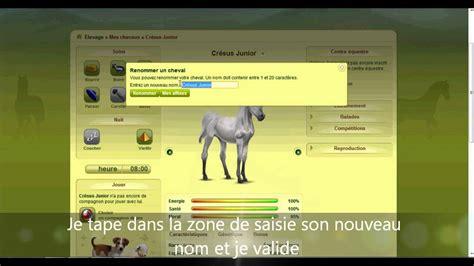 Modification De Nom Free by Changer Le Nom De Cheval Equideow