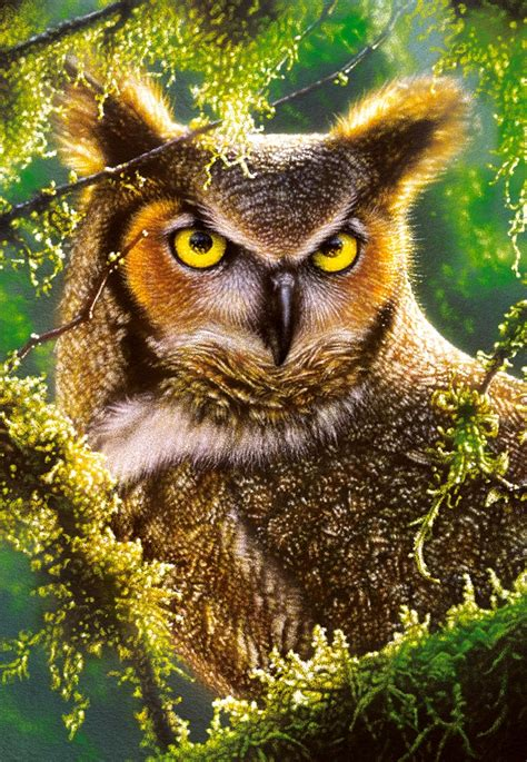 Puzzle Watching Waiting Owl Castorland   Pieces Jigsaw Puzzles Birds Jigsaw Puzzle