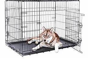 Grande Cage Pour Chien : cage et chenil pour chien principes avantages prix ~ Dode.kayakingforconservation.com Idées de Décoration