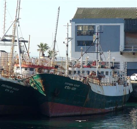 Boat Cruise South Africa by 137 Best Cruise South Africa Beyond Images On