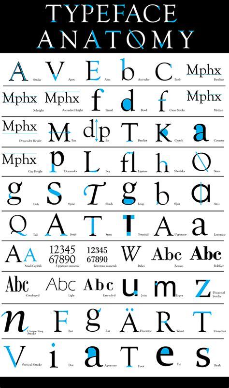 typeface anatomy on behance