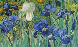 Iris di Van Gogh: analisi