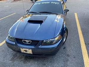 2002 V8 Ford SN95 New Edge Mustang GT, Engine Replaced and Transmission Rebuilt, For Sale - Seat ...
