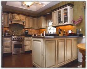 oak kitchen cabinet refinishing home design ideas - Ideas For Redoing Kitchen Cabinets