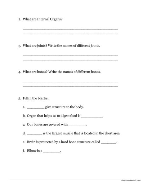 worksheet for class 2 evs cbse environmental science evs