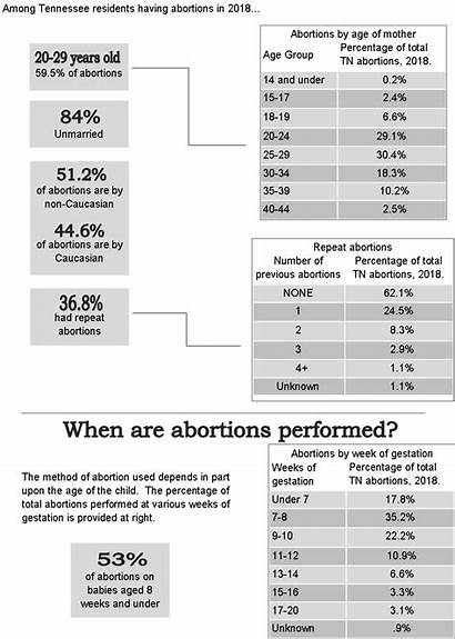 Abortion Numbers Tennessee Report Pdf