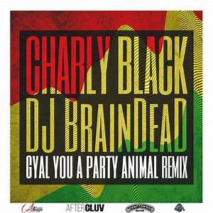 Gyal You A Party Animal | Charly Black – Download and ...