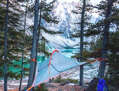 Hammock In The Trees by Ultra Light And Portable Flite Tent Lets You C In The