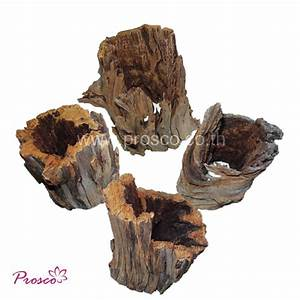Driftwood for Home and Aquarium Decoration - Driftwood