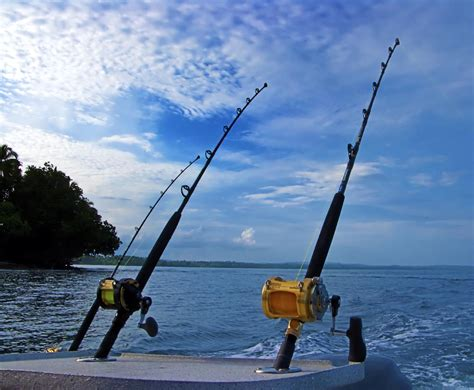 fishing rod types outdoor tips