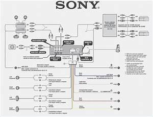 Sony Cdx G1200u Wiring Diagram  U2013 Moesappaloosas Com