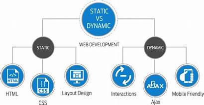 Website Dynamic Difference Websites Between Pages Which
