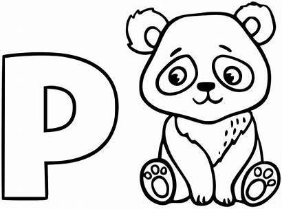 Coloring Pandas Pages Adult Children Printable Animals