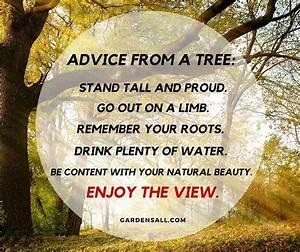 Garden Memes: Q... Garden Happiness Quotes