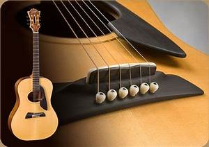 Pin by Rennie Frank on Guitars I own ... Guitars on the ...