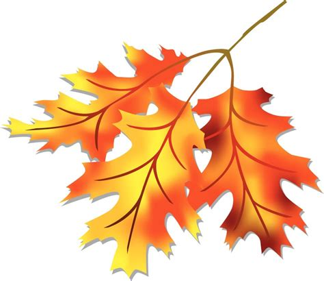fall leaves clipart clipartioncom
