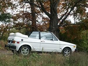 1981 Vw Rabbit Convertible  My First Car   Loved It  So