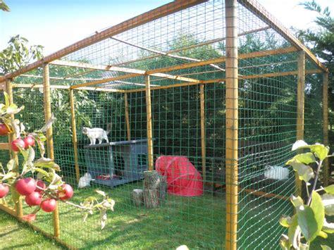 cage pour chat exterieur cage pour chat exterieur 28 images un enclos pour chat catio n est pas une prison enclos