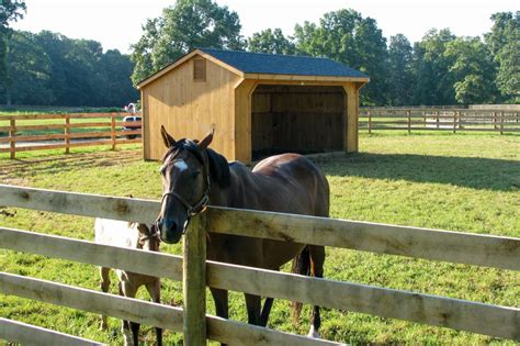 horse barn run barns shed sheds row beam yard country garages storage build overhang aisle thebarnyardstore center rancher