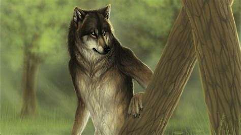 Animated Wolf Wallpaper Hd - wolf wallpapers hd desktop and mobile