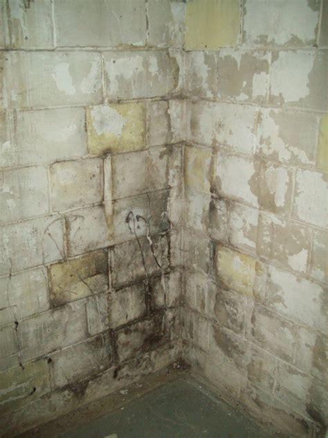 bad cinder block walls  basement
