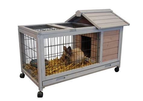 cage a lapin d interieur cage cochon d inde interieur exterieur dunland animaloo