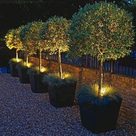 landscaping lights ideas 432 best images about outdoor lighting ideas on pinterest