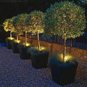 432 best images about outdoor lighting ideas on pinterest With outdoor solar lights for winter