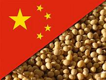 Beijing warns US farmers may lose China market for good, but plays down tariffs impact at home…