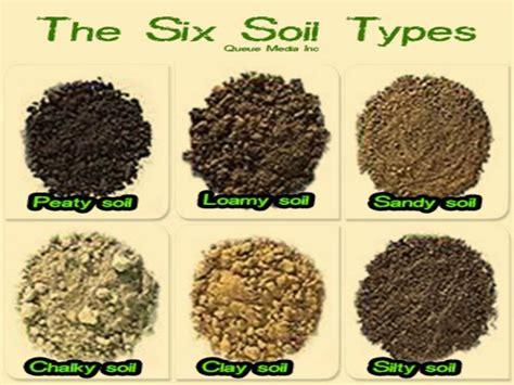 The Six Soil Types Suitable Gardening Soil Diy