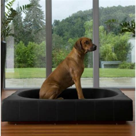 canapé pour chien grande taille lit niche chien design modeles design de maison