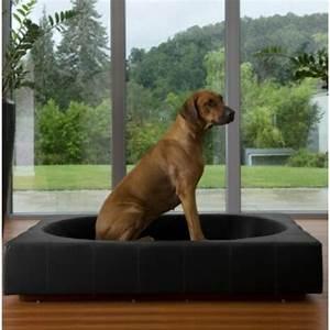 le tapis pour chien grande taille est ici With tapis moderne avec canapé lit pour chien