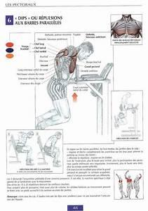 Guide De Musculation  Best Chest Workouts  Avec Images