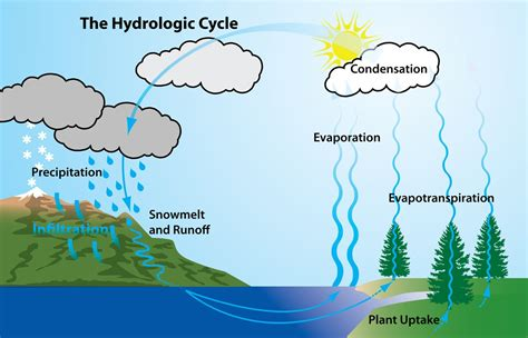 water cycle diagram goosegeogblog