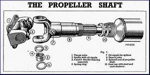 Why Is Spleen Connection Provided In An Open Propeller