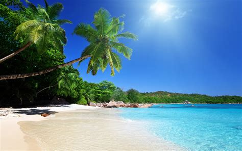 tropical beach wallpaper 2560x1600 32294