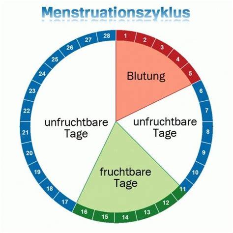 die besten  menstruationszyklus ideen auf pinterest