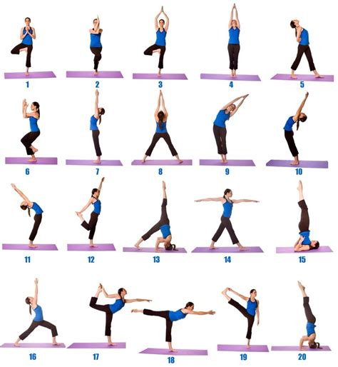 yoga poses  beginners  images yoga poses