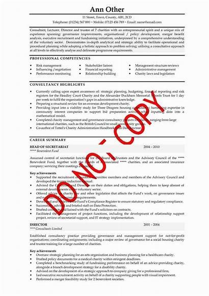 Cv Examples Template Example Executive Sample Resume